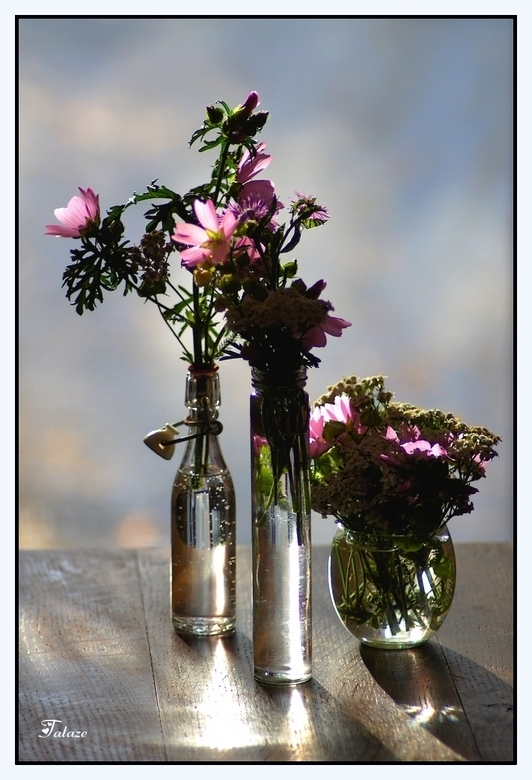 Petits bouquets de saison