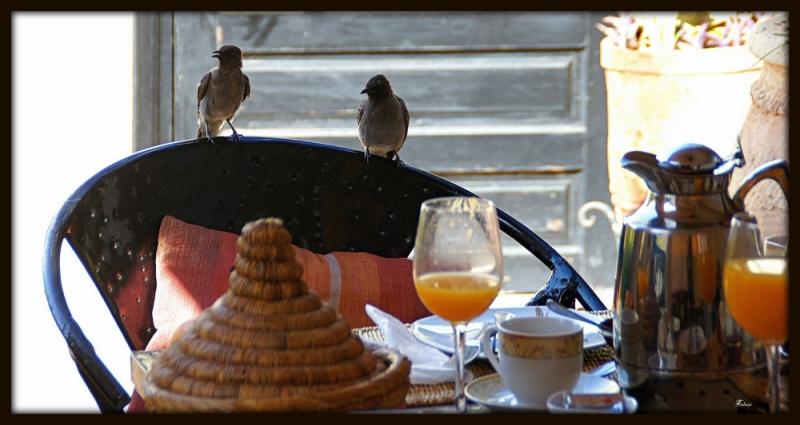 Nous sommes attendus pour notre petit déjeuner