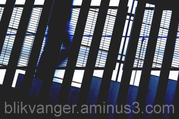 blikvanger219