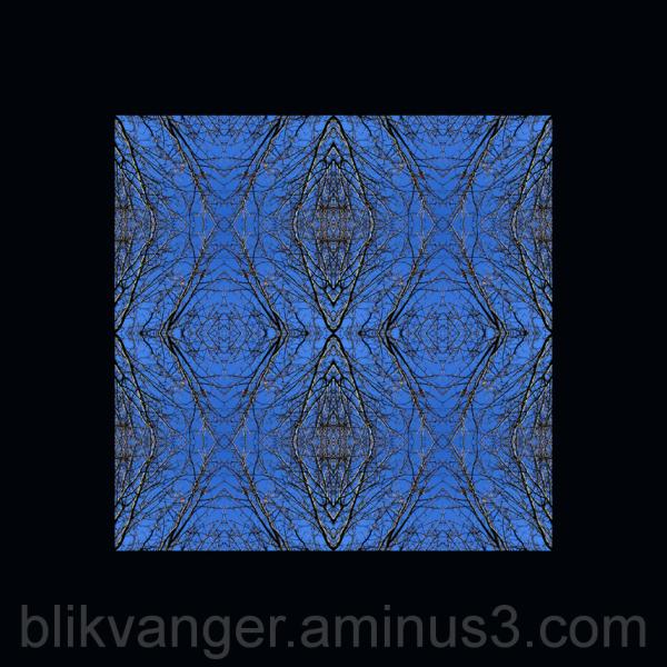 blikvanger277