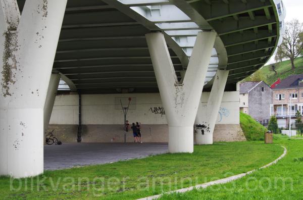 blikvanger419