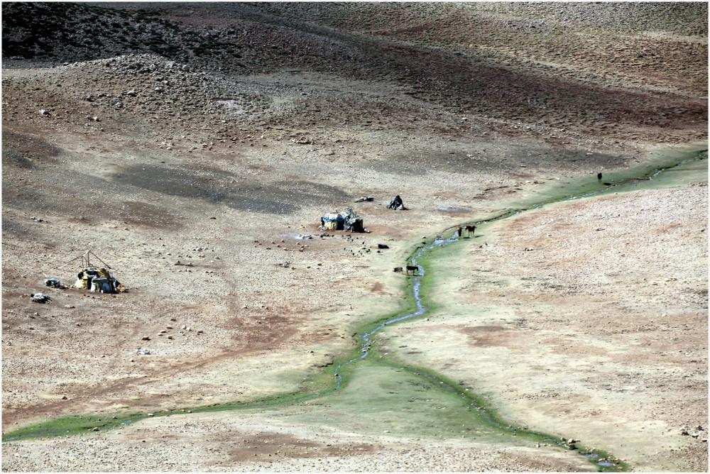 Maroc , campement de nomades dans le moyen Atlas