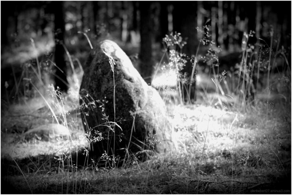 Alignement de pierres en Poméranie, Pologne