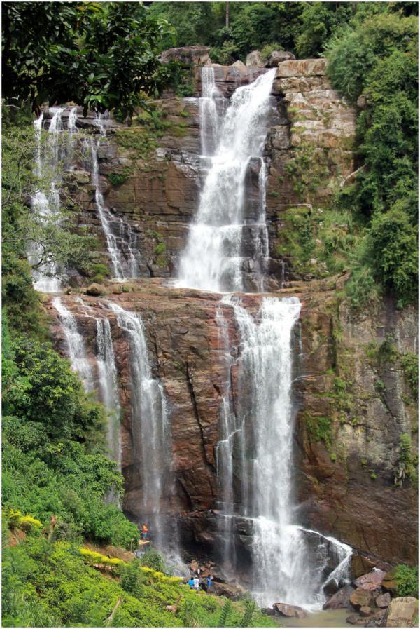 Jolie cascade entre deux plantations de thé.