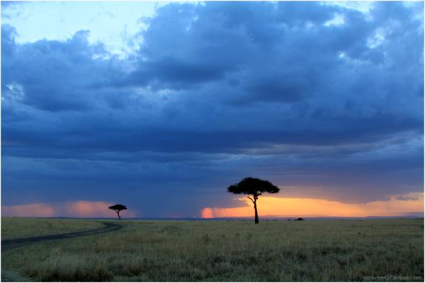 Couché de soleil au Kenya
