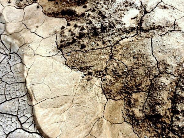 tableau en terre séchée  -  dried  earth painting