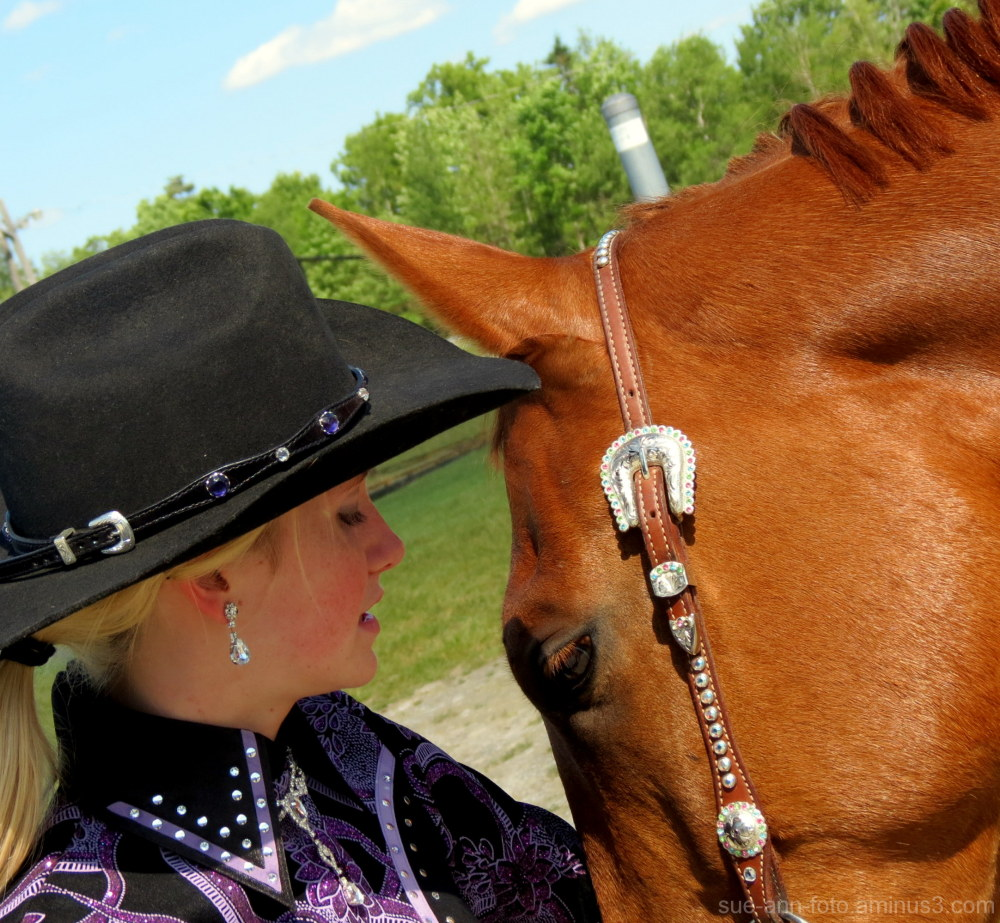 equitation competition