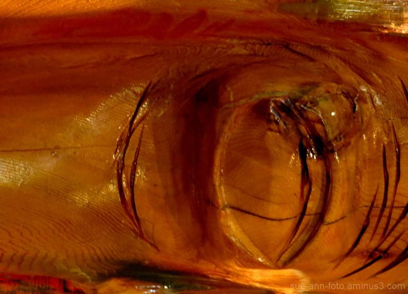 oeil de bois - wooden eye