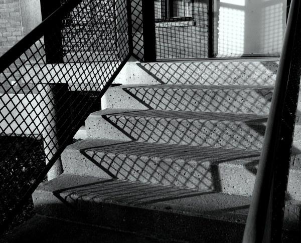 quadrillage dans l'ombre -grid in shadow