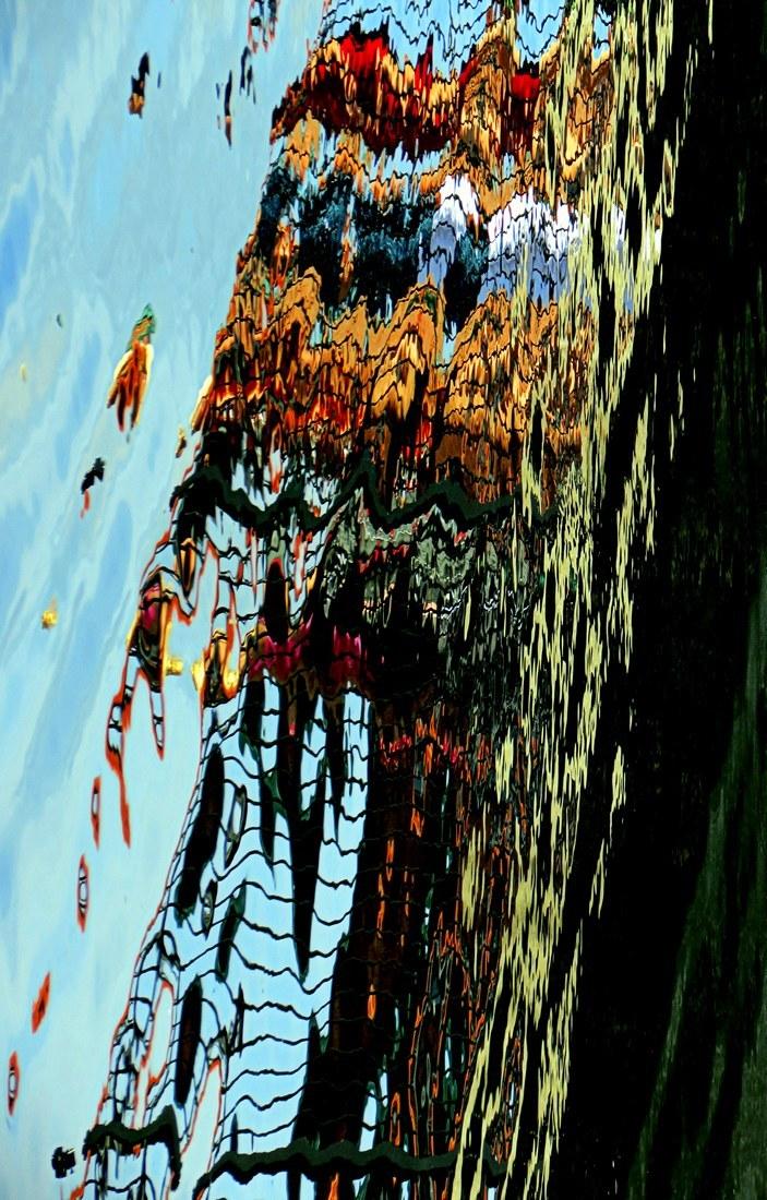 cascade  de couleurs -cascades of colors