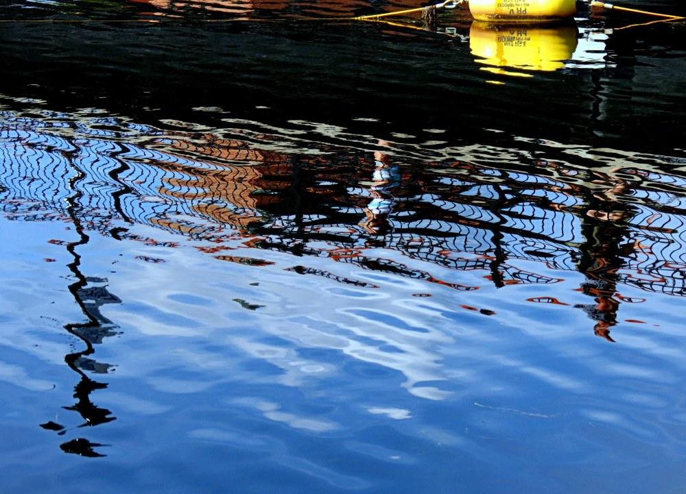 buey on the lake