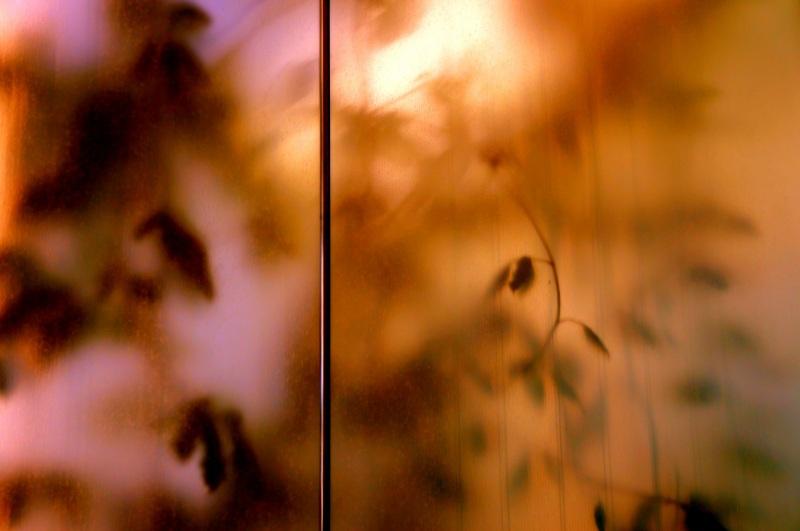 derrière la fenêtre givrée