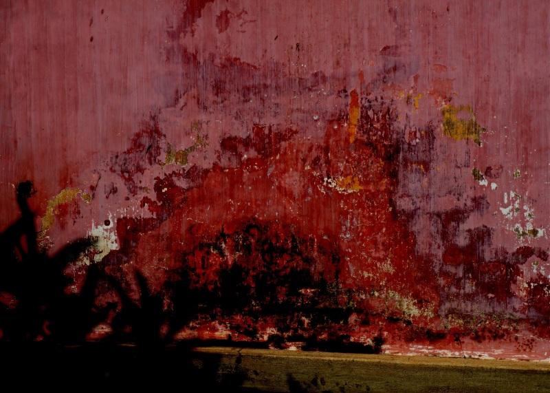 le mur rose