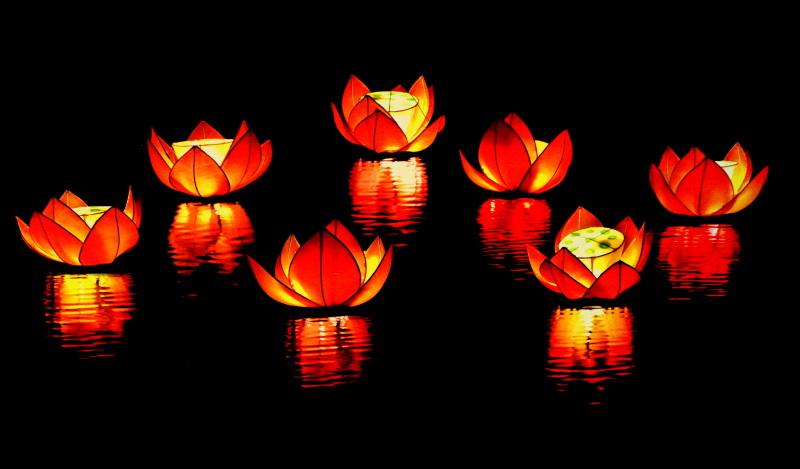 les luminions, ils sont si beaux flottants sur l'Ô