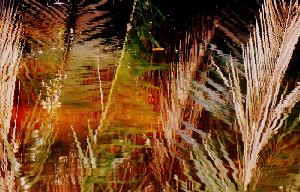 les herbes sur l'eau