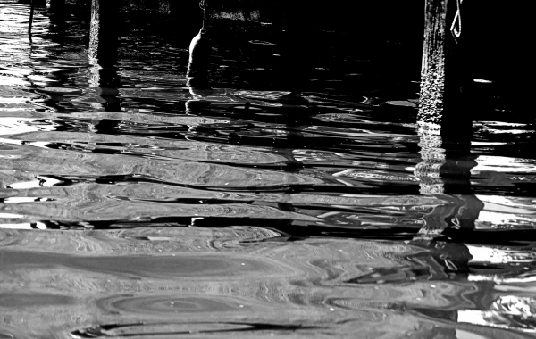 water design in black and white
