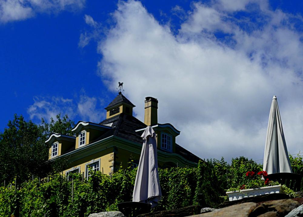 terrasse du vignoble