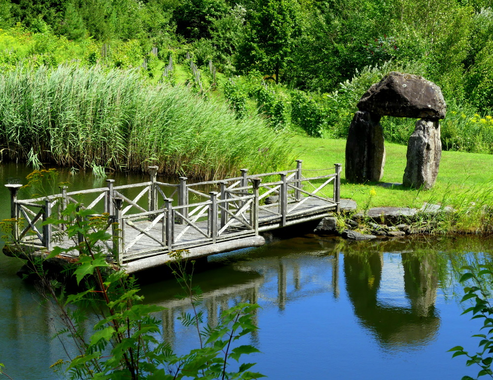 petit pont au bord du lac au vignoble