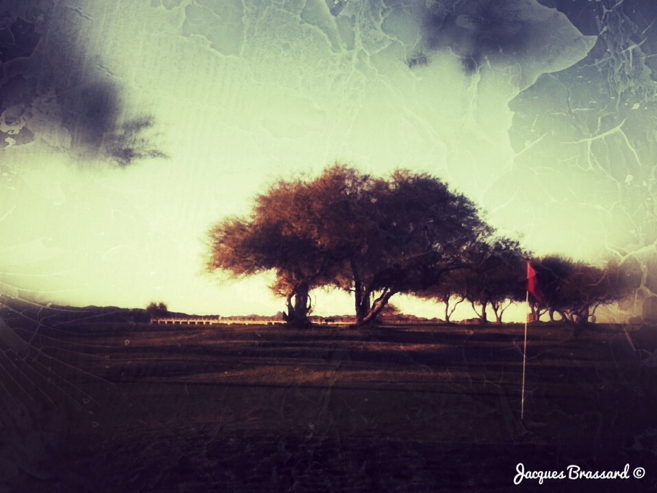 Au club de golf