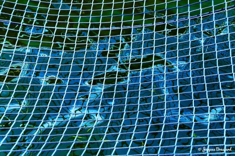 Water bleu