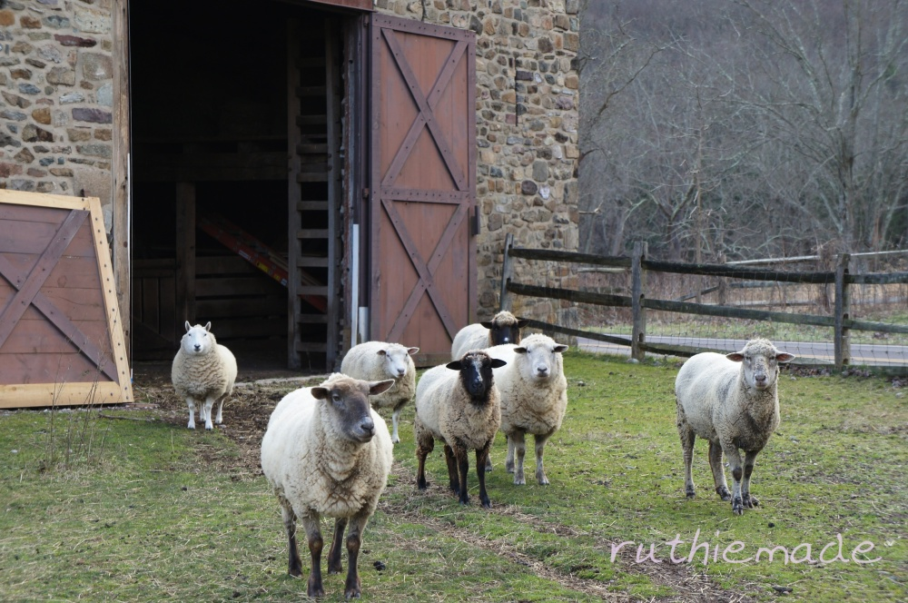 Are EWE watching ?