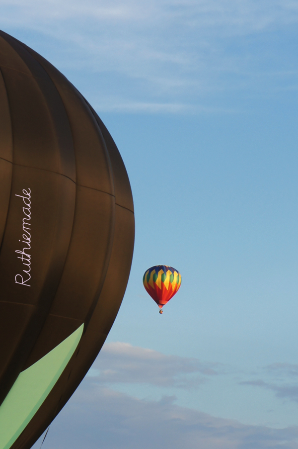 Hot Air Balloon 8