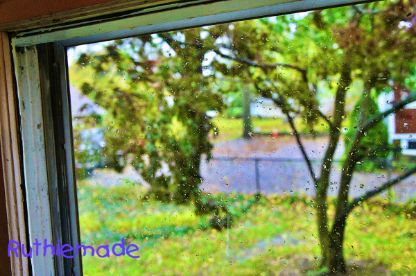Sandy Through my Window