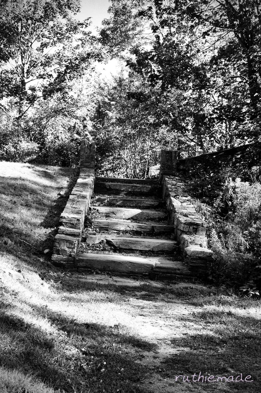 Steps in Park