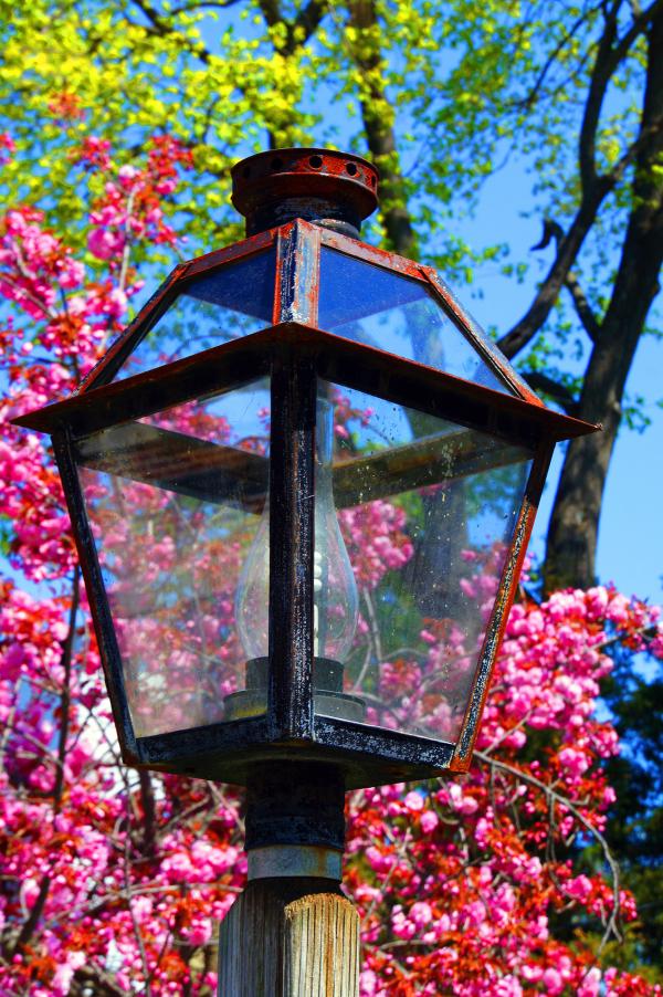 Flowery Lamp Post