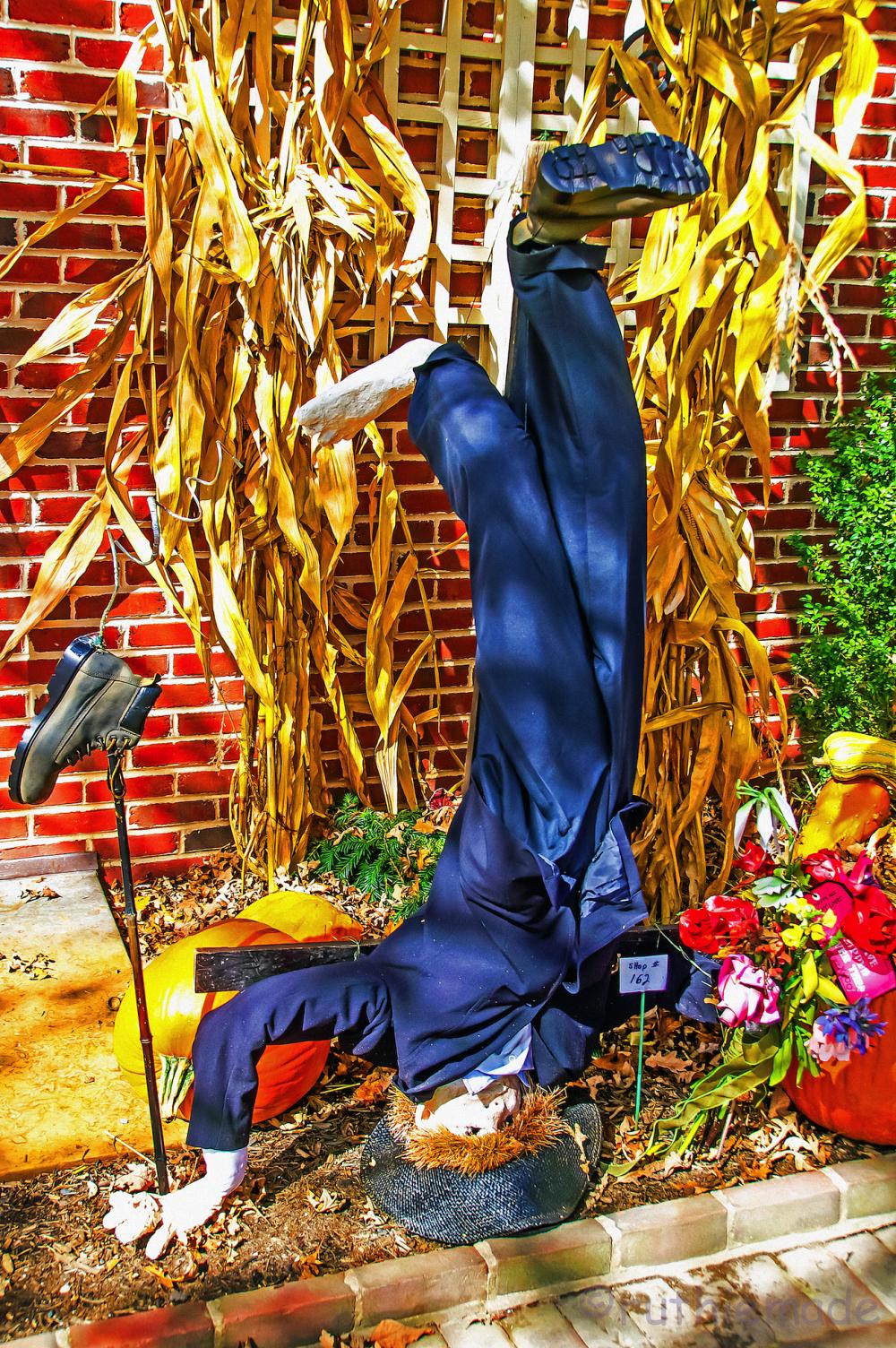 ST Scarecrow 3/10