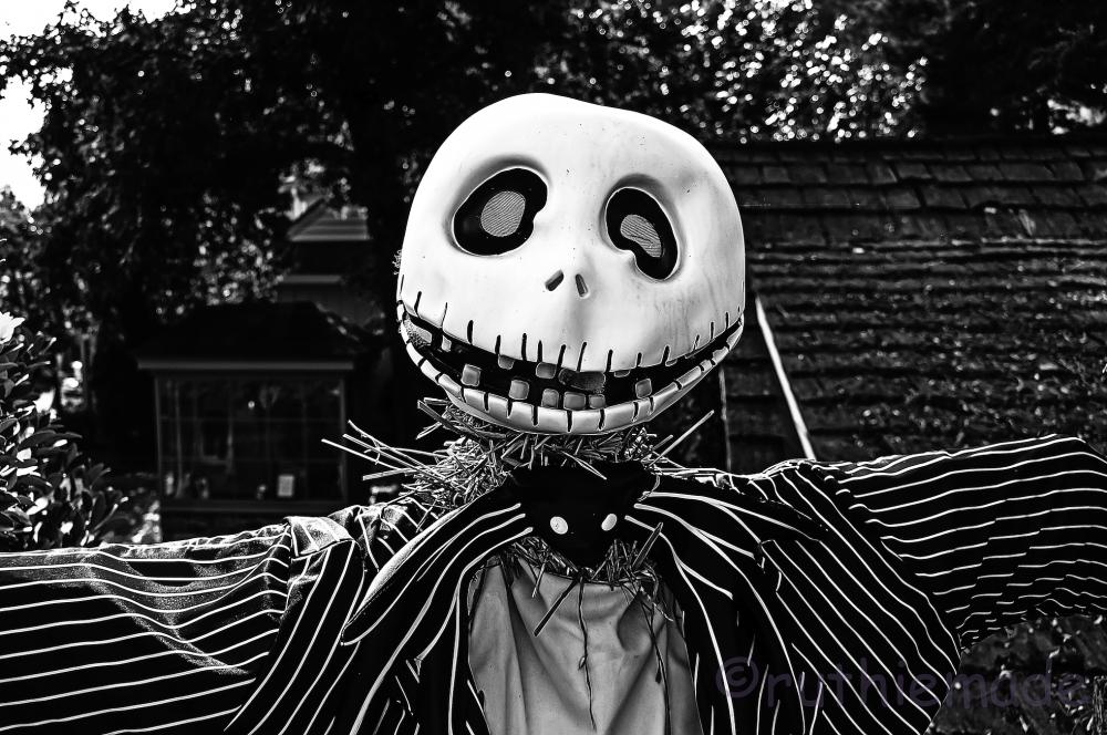 Halloween Scarecrow 5/10