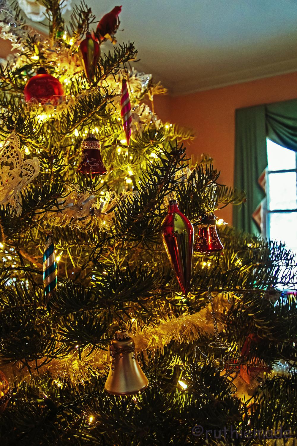 O Christmas Tree 1
