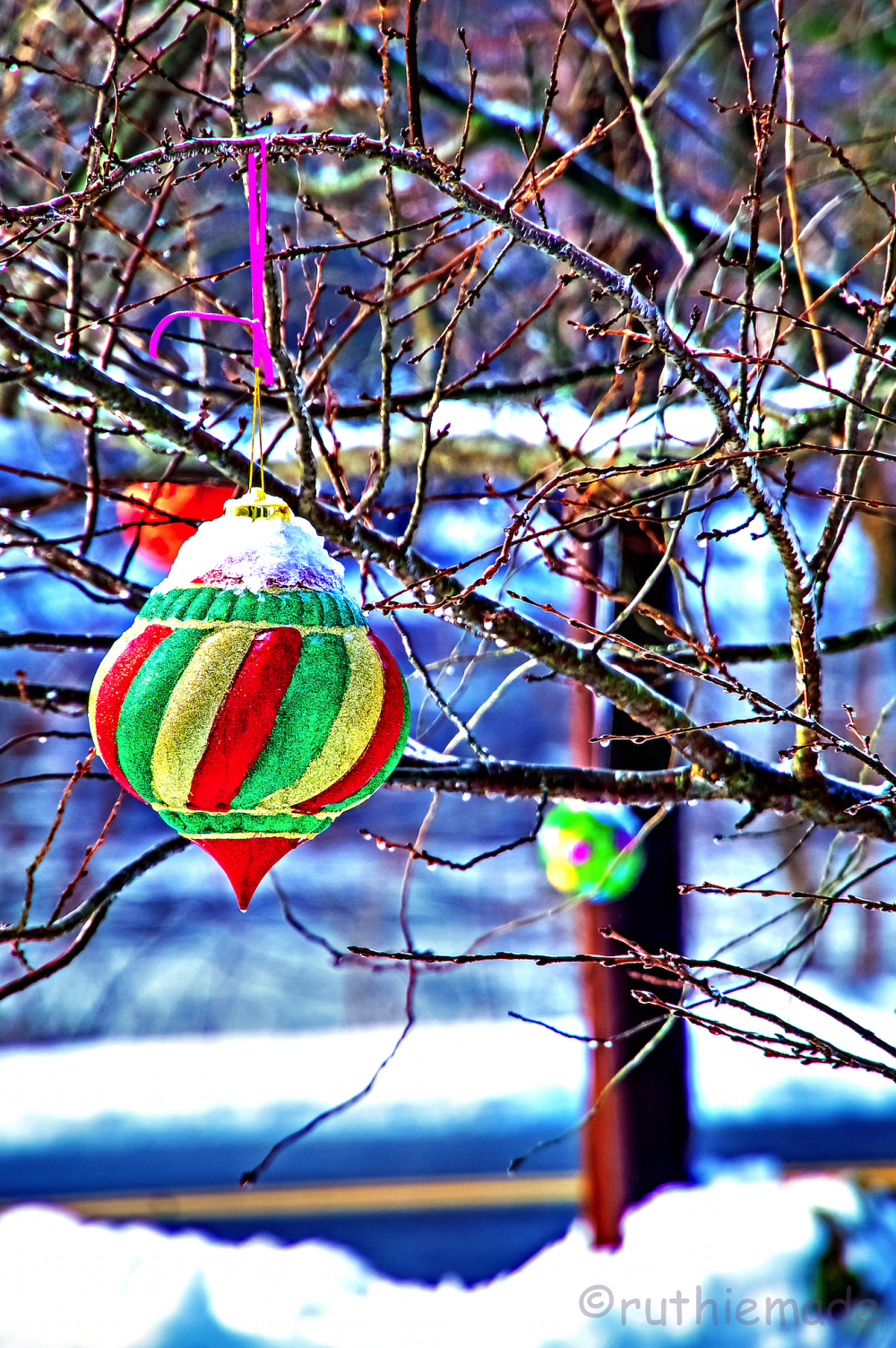 Outdoor Christmas Ornament 2