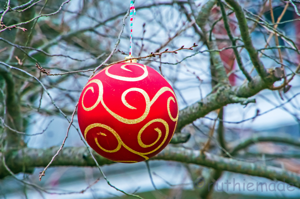 Outdoor Christmas Ornament 4