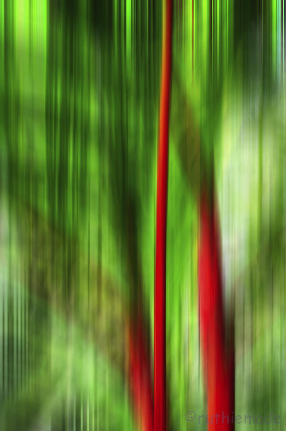 Streak Bamboo