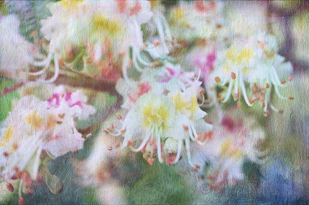 Textured Flower 8