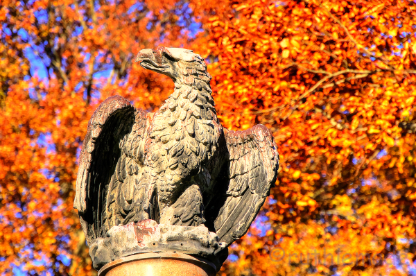 Eagle statue in fall