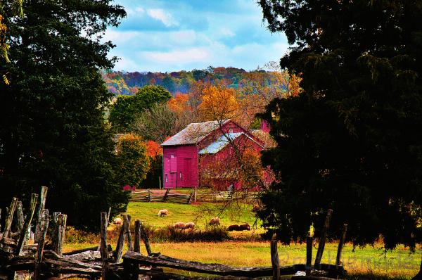 Framed Farm