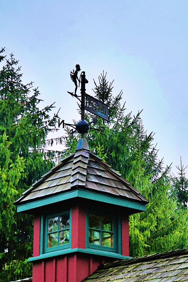 Weather Vane in Fall