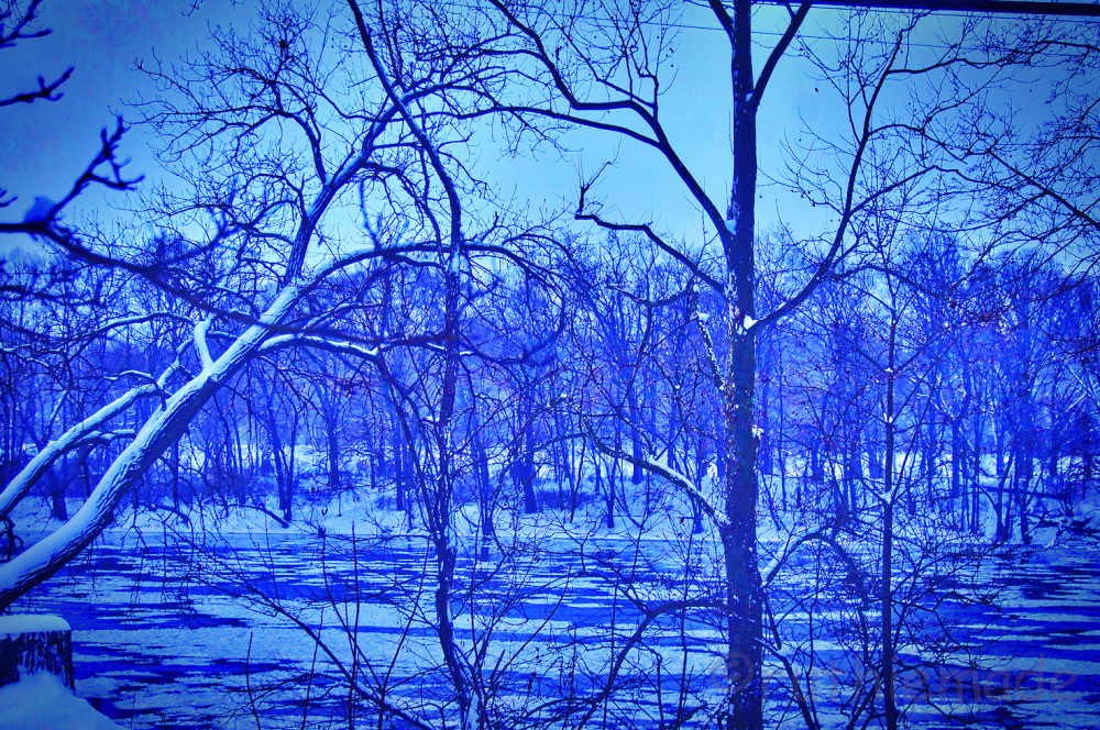 Twilight WInter Riverbank