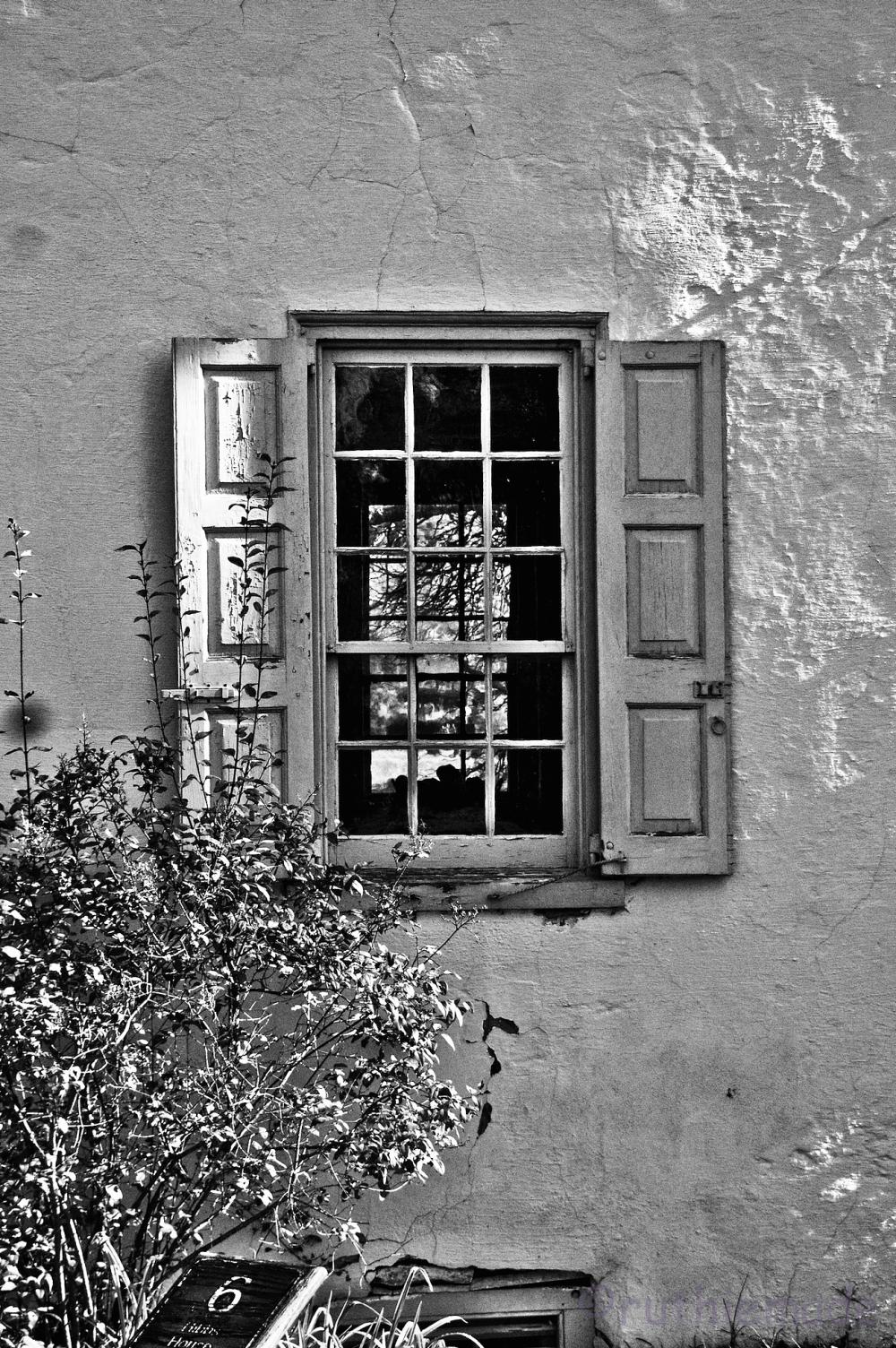 BW Window