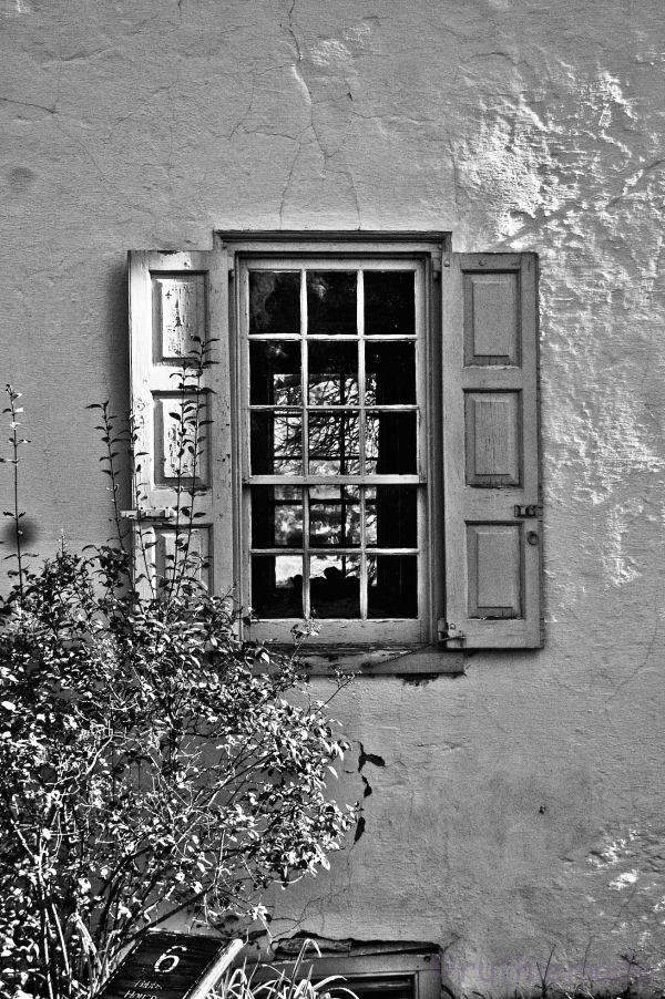 BW Window