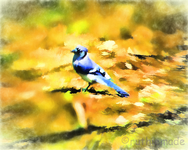Painterly Blue Jay