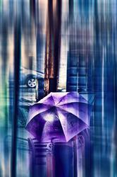 Umbrella in rainy NYC