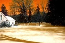 My Snowy Backyard