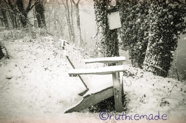 Snowy Riverside Seat