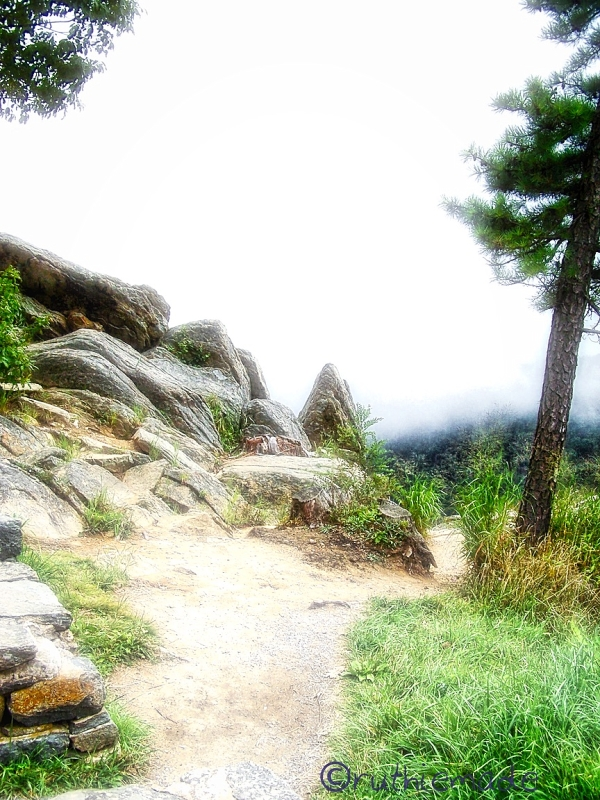 Foggy MOuntain Path