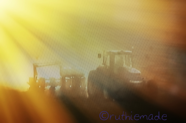 Tractor in the Sun