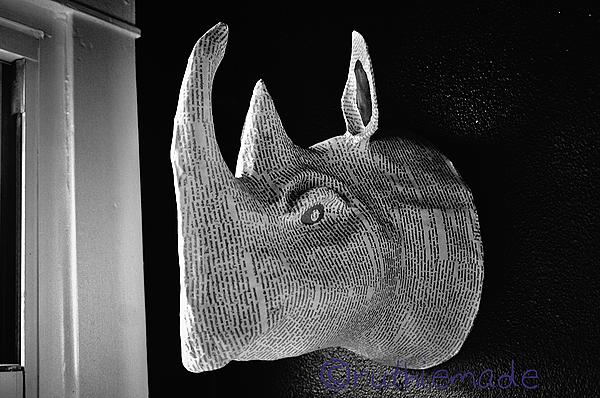 ST Newspaper Rhinoceros