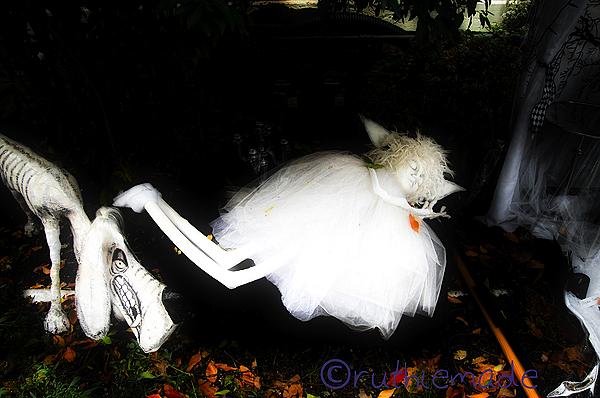 SLeeping at Halloween House